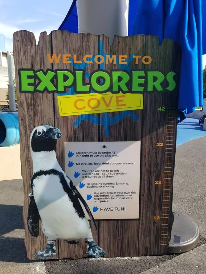 adventure aquarium camden new jersey playground